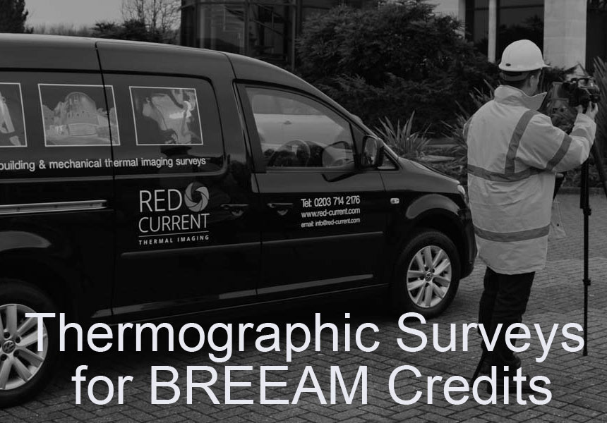 building thermography Redcurrent