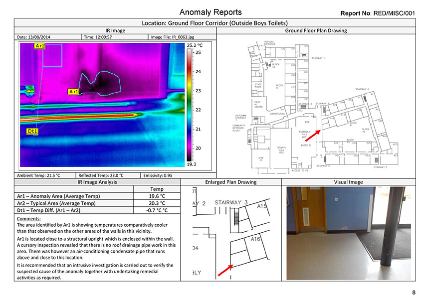 leak-detection-report-page